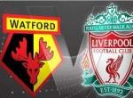 英超第1轮-沃特福德vs利物浦 前瞻